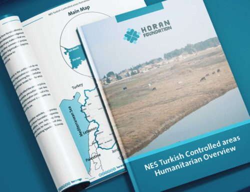 NES Turkish Controlled areas Humanitarian Overview